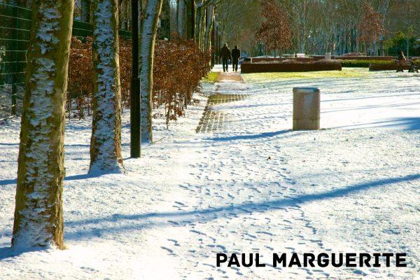 Guyancourt sous la neige 20101217 025