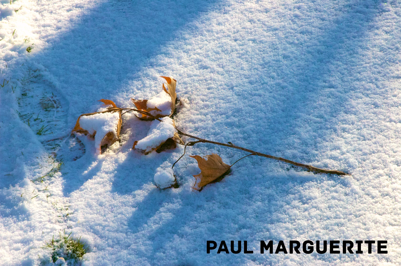 Guyancourt sous la neige