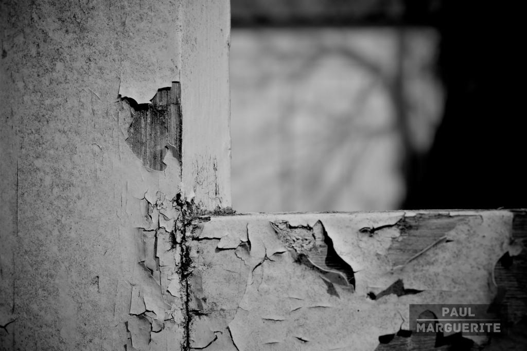 Lampaul-Plouarzel domestique par Paul Marguerite 11