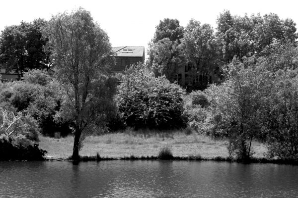 Bois de Guyancourt - par Paul Marguerite -10