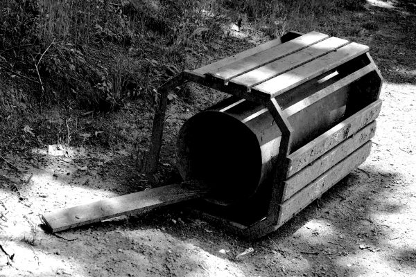 Bois de Guyancourt - par Paul Marguerite -8